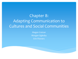 Adapting Communication to Cultures and Social Communities