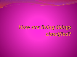 That`s_Classifiedfor students[1]