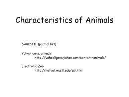 Comparing Animals PPT