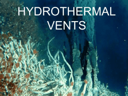 hydrothermal vents - honorsmarinebiology