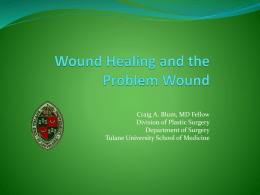 The Principles of Wound Healing
