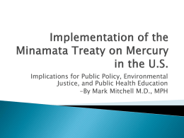 Implementation of the Minamata Treaty on Mercury in the U.S.