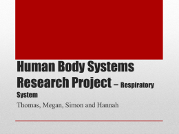 Human Body Systems Research Project * Respiratory