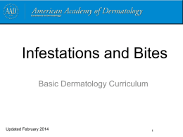 Infestations and bites - American Academy of Dermatology