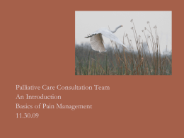 Palliative Care Consultation Team