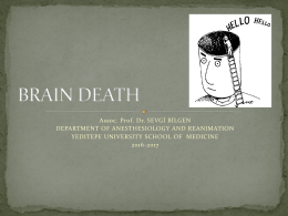 brain death - WordPress.com