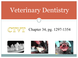 Applied Dentistry for the Veterinary Technician