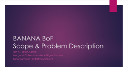 BANANA BoF BANdwith Aggregation for Network Access