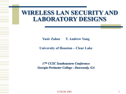 IEEE 802.11b WLAN SECURITY VULNERABILITIES