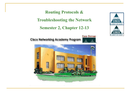 Routing Protocols & Troubleshooting the Network Semester 2