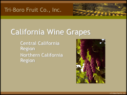 California wine Grapes - Juice Grape