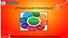 CFO Finance Executive Telemarketing List